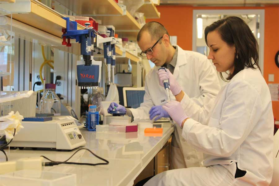 Medical Data Sciencest