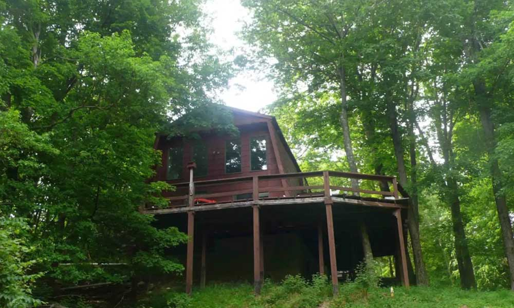 The Treehouse Lovenest, New York