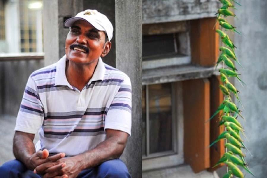 The Birdman Of Chennai Joseph Sekar