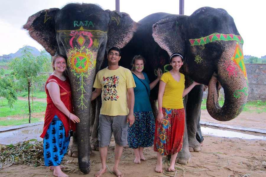 Visit Elephant Farms in Jaipur