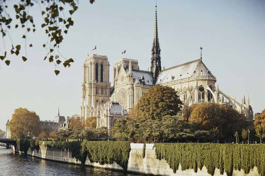 """The roof on Notre-Dame contained a """"forest"""""""