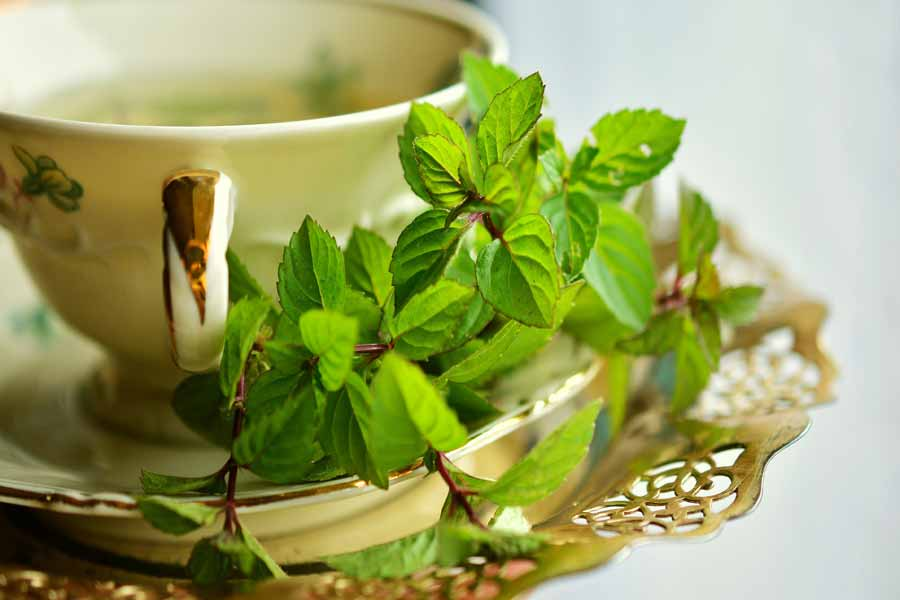 hey use mint leaves to lighten skin