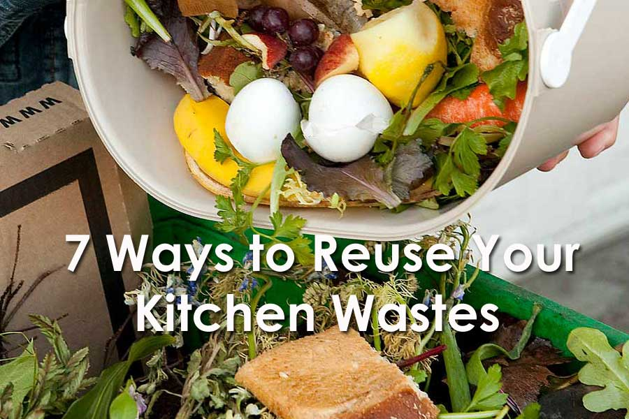 Reuse Your Kitchen Wastes