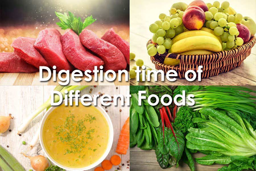 Digestion time of different foods