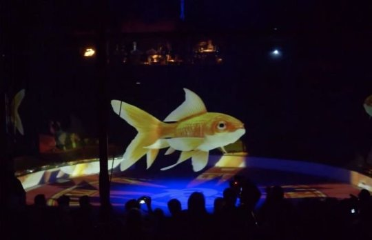 Animal Holograms Circus Roncalli Germany