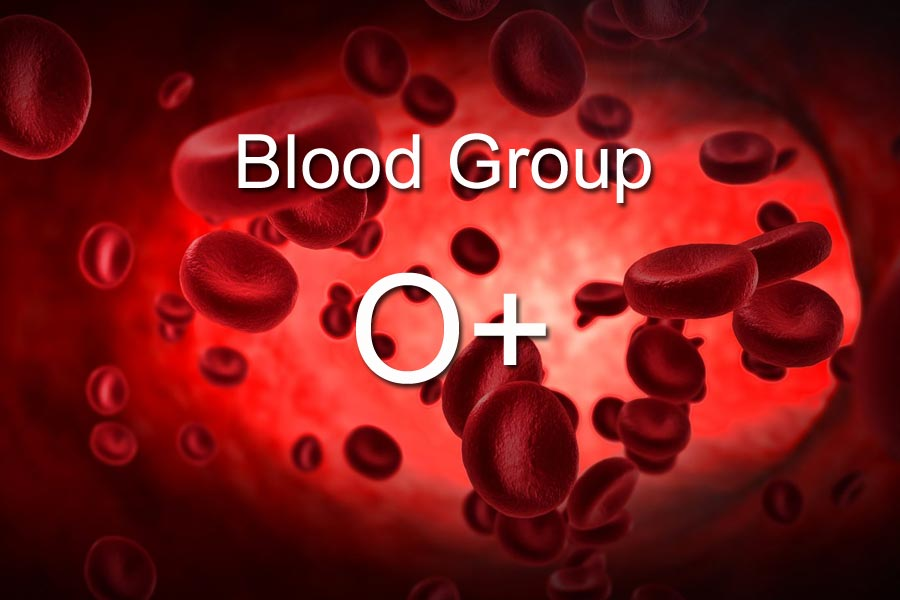 O+ Blood Group Personality