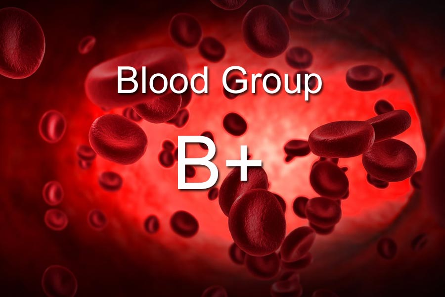 B+ Blood Group Personality
