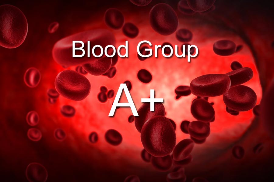 A+ Blood Group Personality