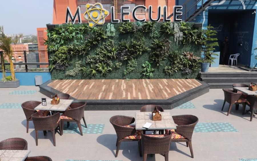 Molecule Pub Lucknow