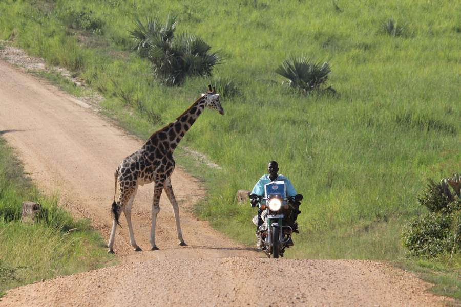 UgandaTravel