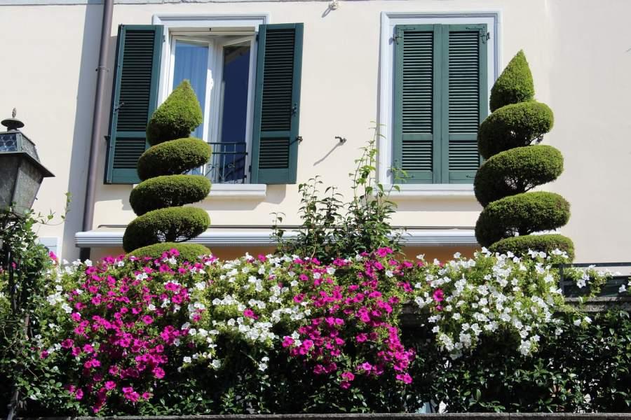 Disadvantages of plant shutters