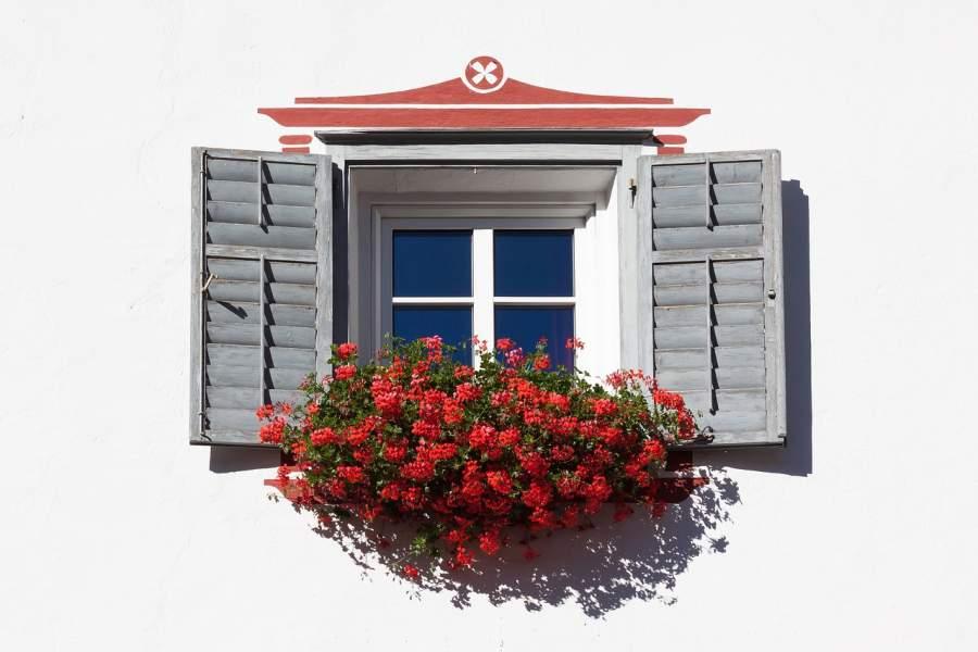 Advantages of plant shutters