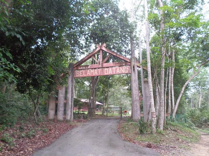 Bukit Batu Lebah Recreational Forest