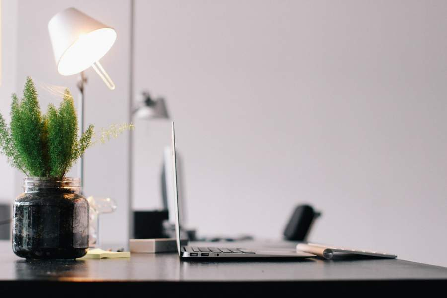 A Small Plant At An Office Desk Can Reduce Your Stress At Work