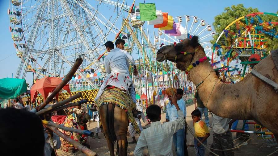 Lucknow mahotsav Travel