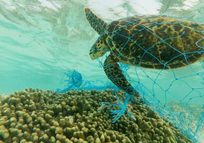 Single-Use Plastic is ban in 7 Caribbean Countries