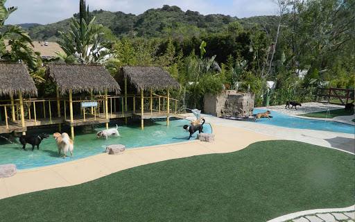 Paradise Ranch Resort California, USA