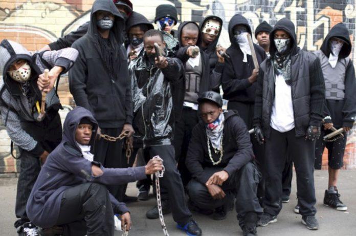 Most Dangerous Gangs in the world