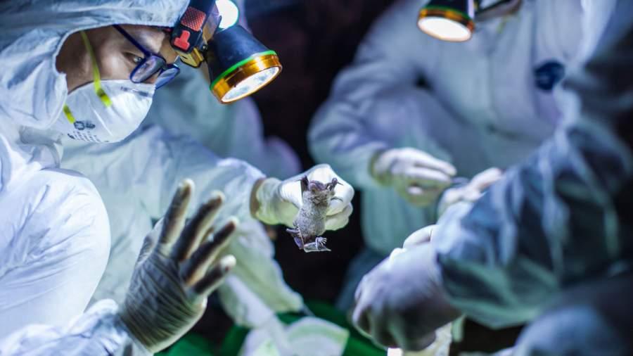 Preventive Measures To Avoid Contagious Coronavirus