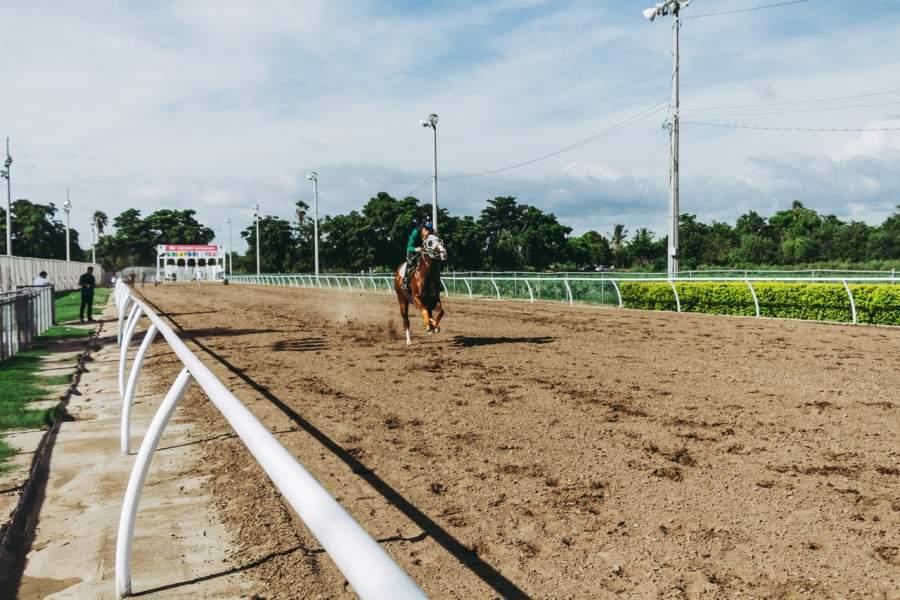 Horse Racing Myths
