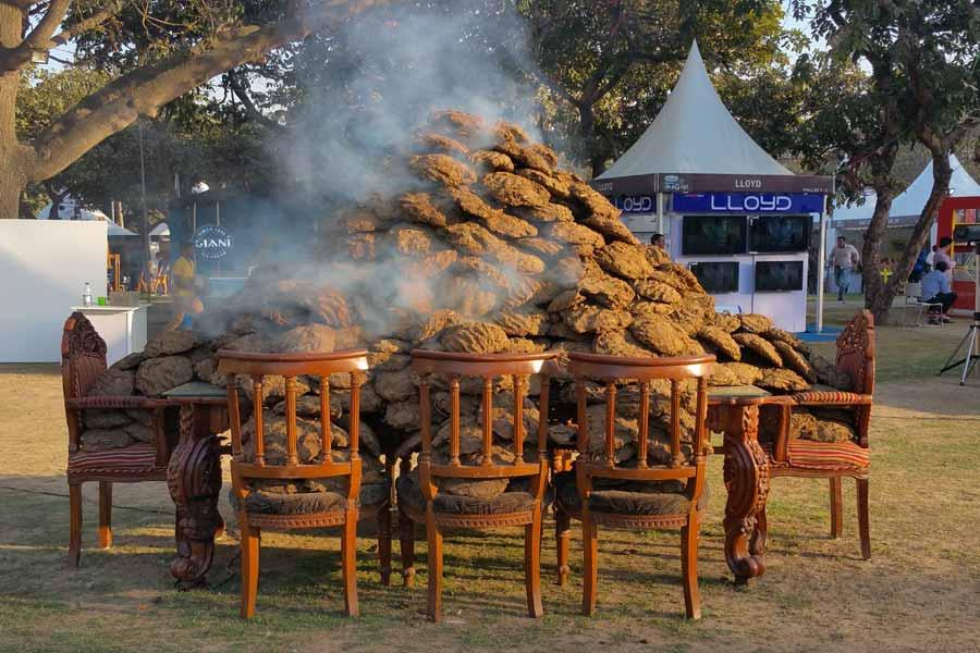 Lost in Smoke, Installation in Nehru Park. ND