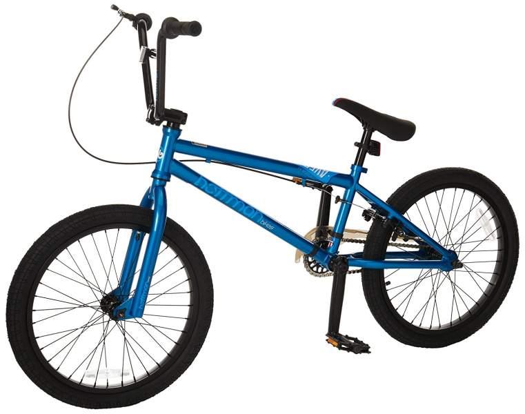 Hoffman Aves Boy's BMX Bike Blue