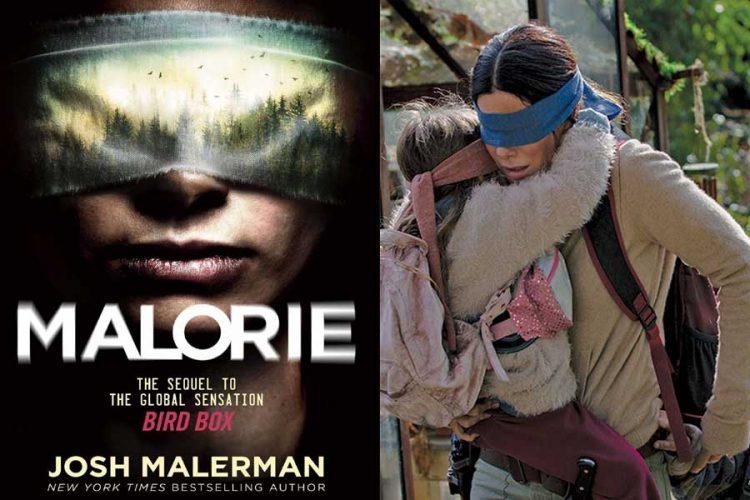 The Bird Box Sequel Malorie