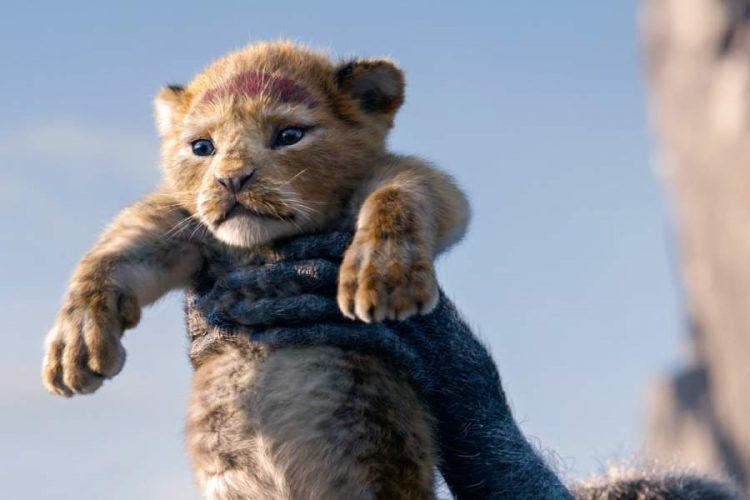 Disney's Lion King Sequel