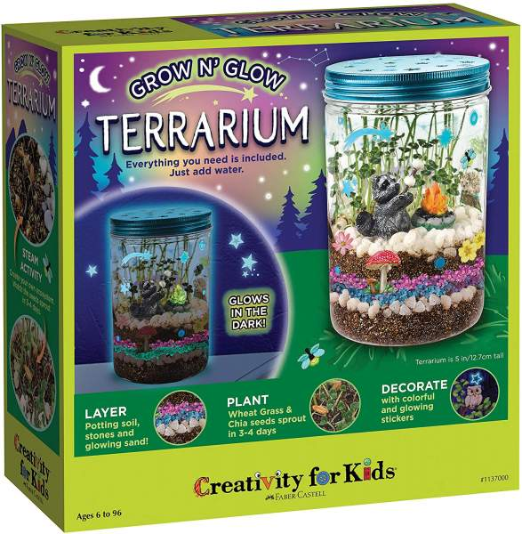Grow N and Glow Terrarium