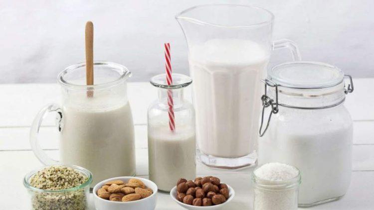 6 Plant-Based Bowls of Milk
