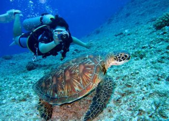 5 Water Sanctuaries and Marine National Parks in India
