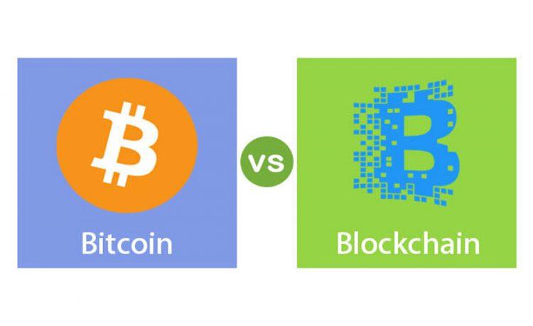 Bitcoin Vs. Cryptocurrency
