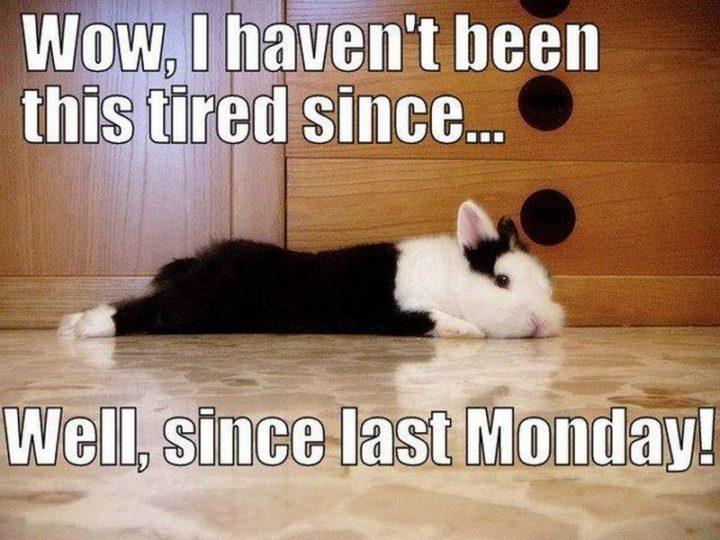 Monday-fun