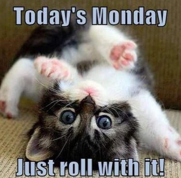 today-is-monday