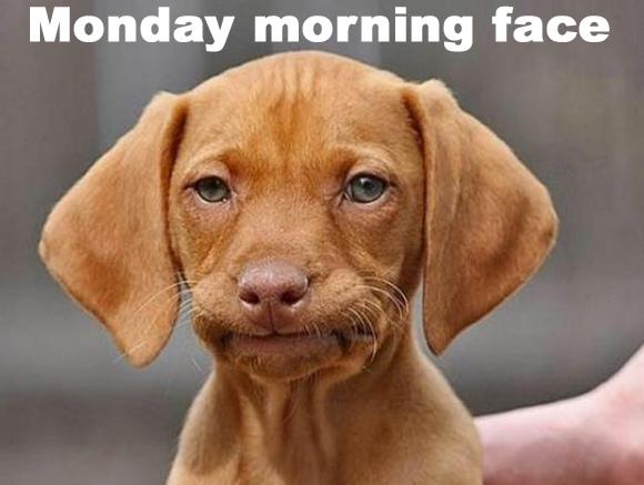monday-morning-face