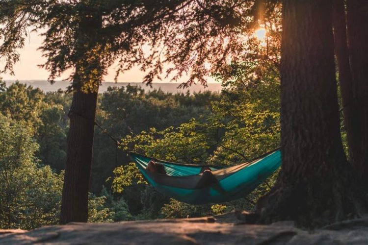 Different Types of Hammocks That Exist Today