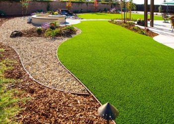 Hiring Drought Tolerant Landscape Design