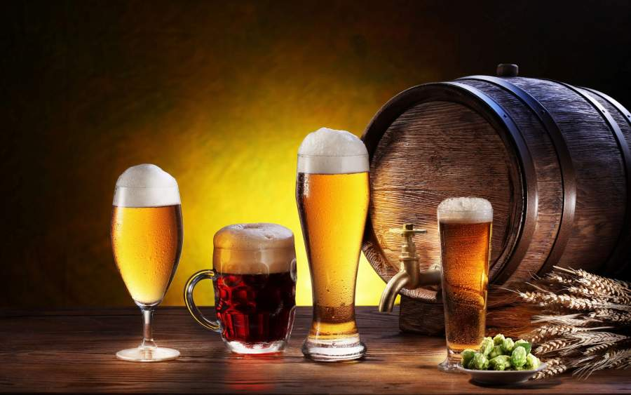 Craft Beer Galore for the Hoppy Pal