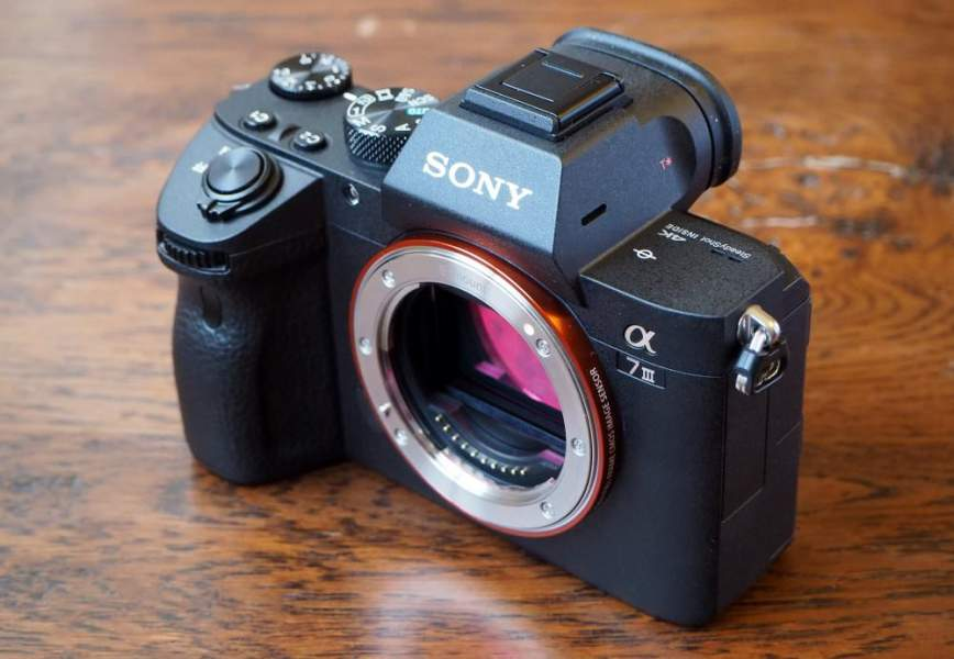 Mirrorless Camera