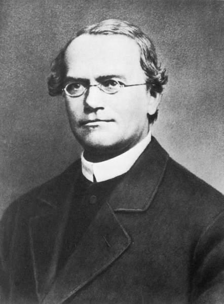 Gregor Mendel got Fame after Death