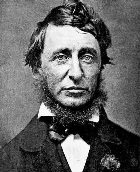 Henry David Thoreau got Fame after Death