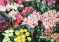 Services of a Professional Florist in Toa Payoh