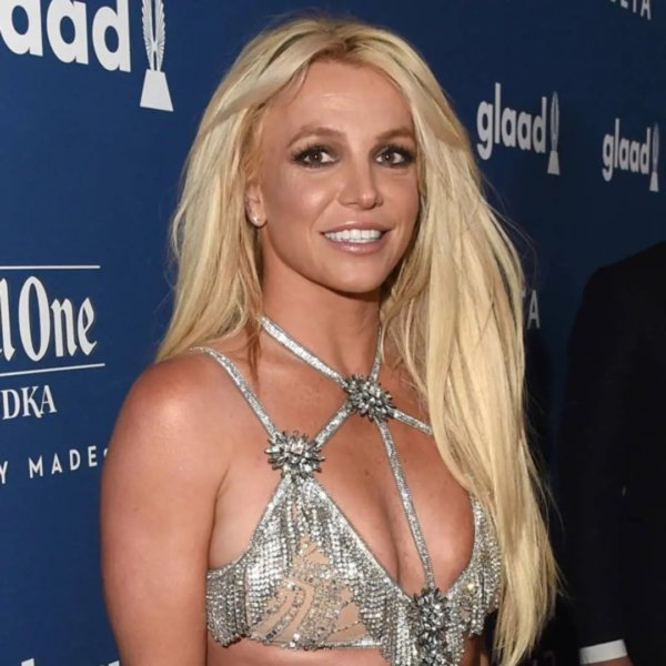 Britney Spears' Steamy Topless Picture