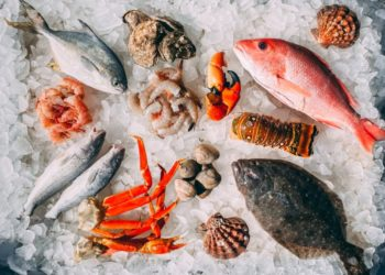Types of Seafood
