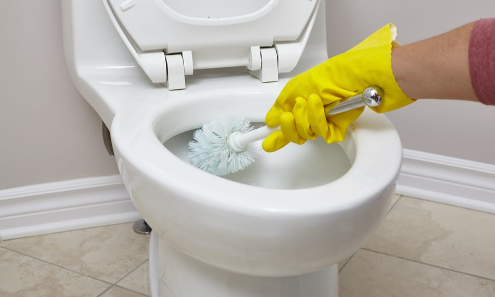 unclog toilet with the toilet brush