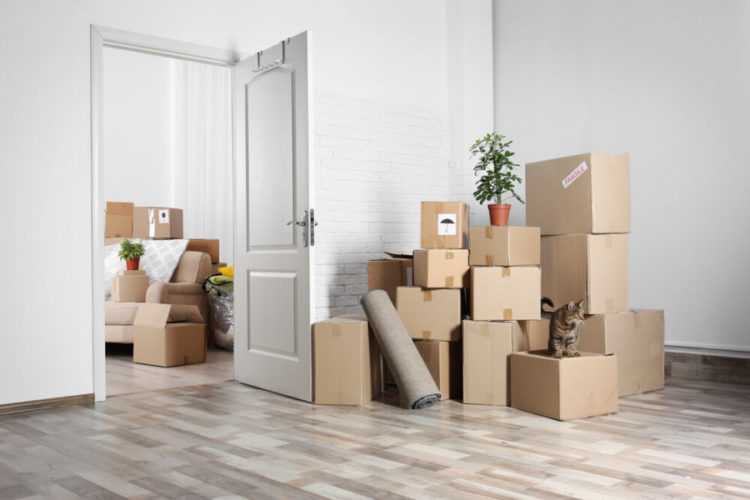 How Much Should I Tip New York Movers