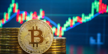 Evaluating the Potential of Cryptocurrencies