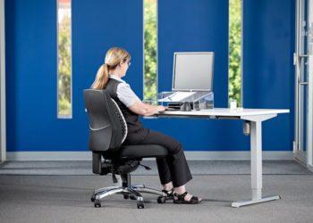 Chair Lumbar Supports