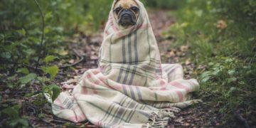 Ways to Make The Colder Months Go By Quicker