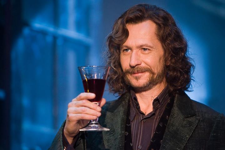 Sirius Black - Harry Potter Characters